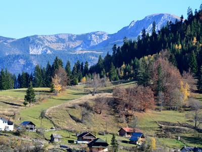 One of the nature highlights of the Balkan is the Kosovar Rugova ...